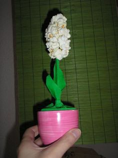 JÁCINT PATTOGATOTT KUKORICÁBÓL - tavasz, virág, popcorn