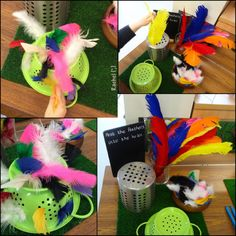 Birds and Spring - lots of hands-on activities from Stimulating Learning with Rachel