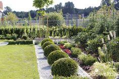 Metamorfozy ogrodowe - strona 41 - Forum ogrodnicze - Ogrodowisko Chelsea Flower Show, Stepping Stones, Landscape, Outdoor Decor, Flowers, Plants, Gardening, Inspiration, Home