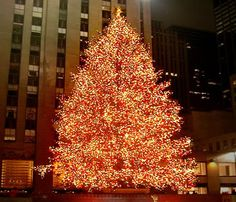 Love NYC, especially at Christmas time.
