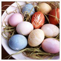 How to Naturally Dye Easter Eggs | POPSUGAR Smart Living
