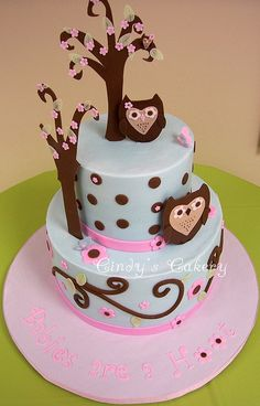 Baby Shower Ideas for girl with owl theme | Jessica's Owl Baby Shower | Flickr - Photo Sharing!