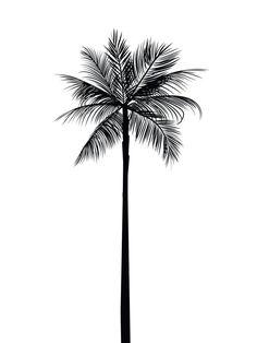 Bildergebnis für palm tree tattoo tumblr