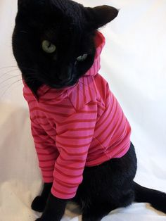CoolCats Cat Hoodie Hot Pink with Red Stripes by RockinDogs, $27.95