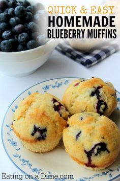 Needing quick breakfast ideas? Try this easy Homemade Blueberry Muffin Recipe that you can make in one bowl. Plus these homemade blueberry muffins taste amazing!