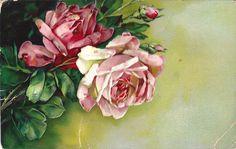 "Beautiful pastel roses ~ ""A joyful birthday"" postcard Birthday Postcards, Holiday Postcards, Vintage Postcards, Vintage Images, Vintage Prints, Vintage Art, Vintage Beauty, Vintage Items, Vintage Flowers"