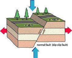 Free Earthquakes Unit & Lapbook