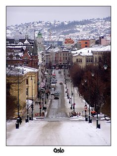 "I write about spending Christmas in Oslo, Norway, in my book, ""Finding My Invincible Summer""- Muriel"