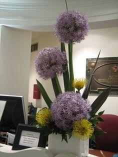 This Week's Flowers
