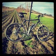 Dieter's Radtouren: 30.12.13 - Wasenbruck Mountain Biking, Bicycle, Vehicles, Bike Rides, Bike, Bicycle Kick, Bicycles, Car, Vehicle