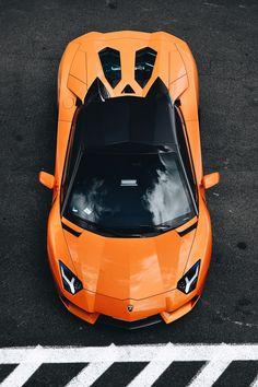 Vanity Exposition. — hyper-caine: Aventador Roadster   ©   HC