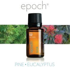 BRISK Boost your senses with Epoch Brisk essential oil blend and clear your airways with the reviving aromas of a pine and eucalyptus forest after a cleansing rain. USES: Put directly on the soles of your feet Rub under your nose Rub on your chest Diffuse in an Epoch Diffuser Drop in a hot bath and soak Drop in a steaming bowl of hot water & deeply inhale the vapors Other Blend Ingredients:  Lemon Nutmeg Tea Tree Thuja Thyme