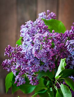 Enjoy our Lilac wax brittle, the Fresh Spring aroma of a blooming lilac bush. Lilac Bushes, Scented Wax, Wax Melts, The Fresh, Fragrance, Bloom, Spring, Plants, Gardening
