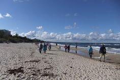 FASTENWANDERN an der OSTSEE im Mai- Frischkost und Wandern an der Bernsteinküste mit TERRA AKTIVA !