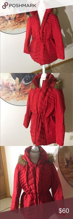 Red Winter Jacket Red Winter Jacket with hood, waisted band if you'd like. Beautiful for curvy woman. Kenneth Cole Reaction Jackets & Coats