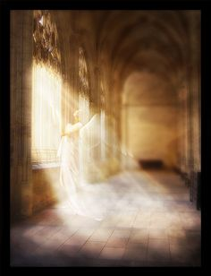 images of angels | ... Dreams ~ Portfolio ~ Digital Art ~ Photomanipulation ~ Angels on Earth