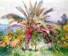 Palm Tree at Bordighera, c.1884 von Künstler Claude Monet als gerahmtes Bild