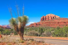 14. Cathedral Rock Trailhead, Sedona, Arizona