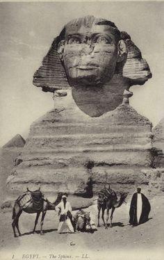 "grandegyptianmuseum: "" Egypt - The Sphinx. Postcard published early twentieth century. """