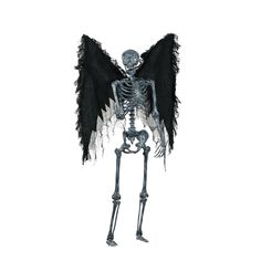Check out Totally Ghoul Life Size Realistic Skeleton Halloween Decoration - ShopYourWay