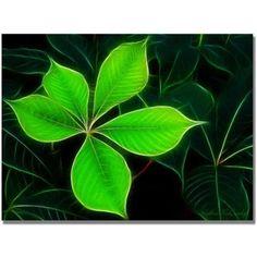 Kathie McCurdy Big Green Leaf
