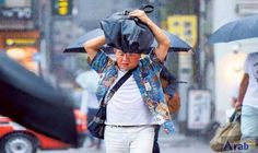 Flights grounded as typhoon hits near Tokyo