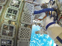Placées à l'extérieur de l'ISS, des algues survivent 2 ans dans l'espace