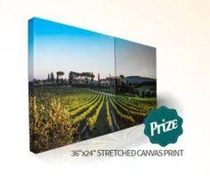The Pictorem Panoramic Photo Contest