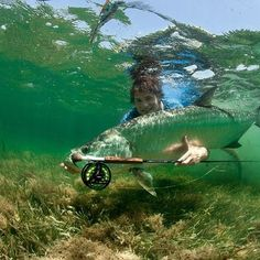 Very cool pic.  It would take some real 'doughnuts' to take a shot like this steelhead fishing in January on a clear, ice cold coastal stream :)  But it would be a picture for the ages.