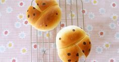 "Great recipe for Ladybug Bread Rolls. When I was thinking of what kind of bug bread to make, my husband said, ""You could probably make ladybugs!"" So I tried it out.  The lady-bug outline can easily round out while baking, so press down firmly when shaping. This is really cute if you make the eyes small and the polka-dots big. Recipe by pitachan1"