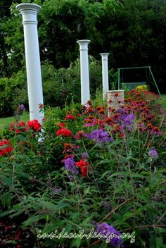 Roses, butterfly bush, and coneflower provide alot of color.