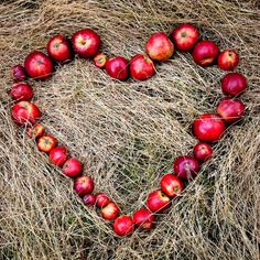 My heart's desire - apples laid out in a heart motif . be still my heart! I Love Heart, With All My Heart, Happy Heart, Your Heart, Grateful Heart, Happy Smile, Heart In Nature, Heart Art, Apple Tree