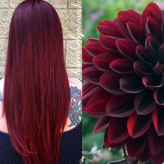 Red burgundy maroon long hair color by @haircolorbymiranda