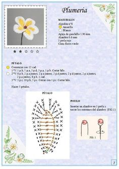 plumeria flower. Not in English but there is a diagram to follow