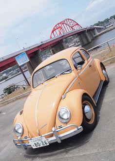 1/1hobby #VW #beetle