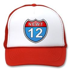 Newt Road to the White House 2012 Hat