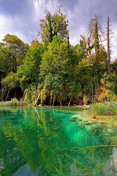 Beautiful emerald waters in Plitvice Lakes National Park, Croatia (by Qba from Poland).