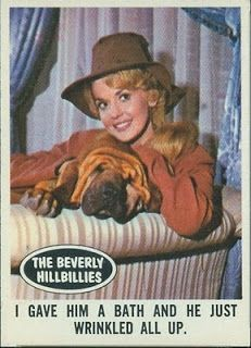 The Beverly Hillbillies trading cards White Tv, Black And White, Doodle Bags, Donna Douglas, The Beverly Hillbillies, 70s Tv Shows, 13 Year Old Boys, Comedy Tv, Hillbilly
