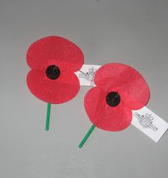 ANZAC Day: Poppy Day. April 25 2015 will be the centenary of the day troops landed at Gallipoli in Turkey during WWI.