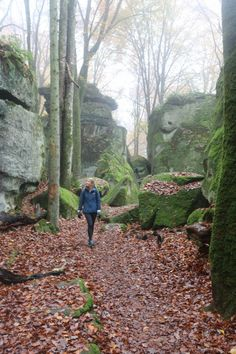 How to spend the weekend hiking the Müllerthal trail in Luxembourg : Possible routes, where to stay and beautiful sights. Hiking Routes, Hiking Trails, Weekend Hiking, Happy Trails, Famous Landmarks, Natural Phenomena, Nice View, Waterfall, Beautiful Places