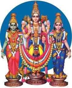 Hindu God Lord Shri Muruga's Pictures - Images - Photos - Wallpapers - Names of Lord Muruga Lord Murugan Wallpapers, Ganesh Photo, Hindu Statues, Ganesh Lord, Lord Ganesha Paintings, Ganesh Idol, Ganesha Pictures, Lord Balaji, Lord Shiva Family