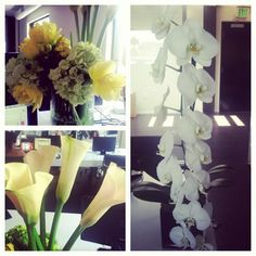 We received a special Monday delivery of gorgeous flowers—aren't we the luckiest?!