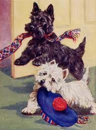 Scottish Terrier and West Highland Terrier - vintage illustration