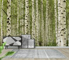 Birch trees Wallpaper from Happywall.com