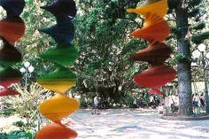 """Praça XV – """"Ilha da velha figueira, onde em tarde fagueira..."""" (Zininho):"""