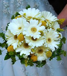 bridal bouquet of white gerber daisies and craspedia balls. :o)