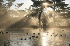The Ultimate Golden Gate Park Scavenger Hunt