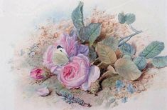 Натюрморты Mary Elizabeth Duffield (British, 1819 - 1914) (28 фото)