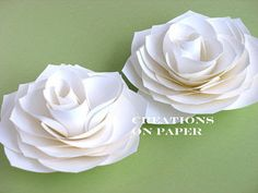 How to make 20 different paper flowers! Already made the type of paper flower in this pic for my bridesmaids <3