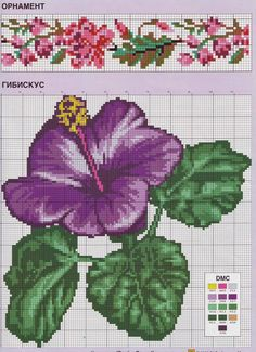 hybiscus flower and flower border cross stitch Tiny Cross Stitch, Cross Stitch Borders, Cross Stitch Flowers, Counted Cross Stitch Patterns, Cross Stitch Charts, Cross Stitch Designs, Cross Stitching, Cross Stitch Embroidery, Hibiscus